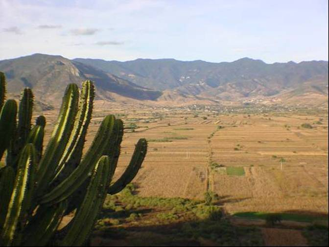 THE SIERRA NORTE MOUNTAINS
